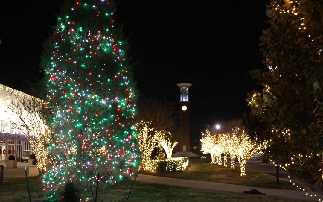 Christmas lights on campus photo gallery