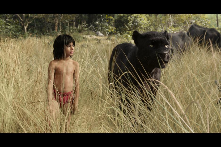 'The Jungle Book' brings fresh ideas to classic tale