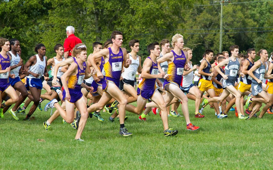 Men's cross country team runs well, despite bad weather