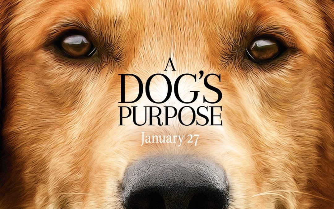 A Dog's Purpose amid controversy during opening weekend