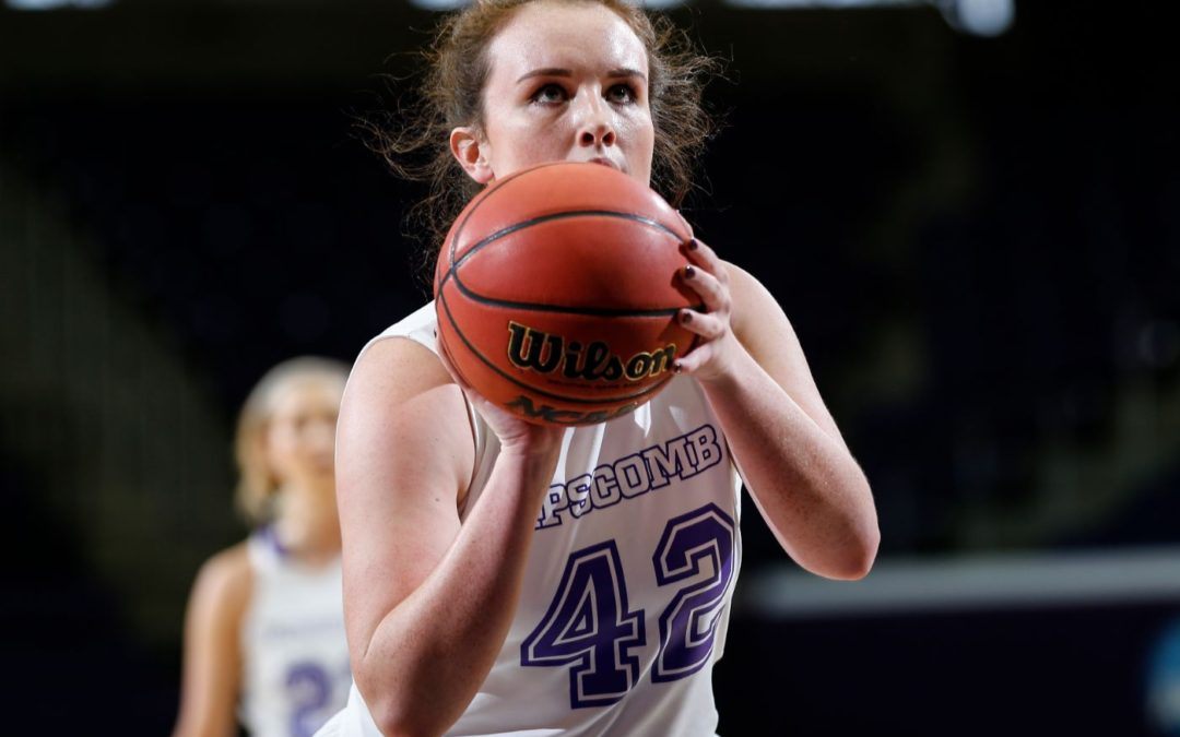 Lady Bisons falter at home to NJIT