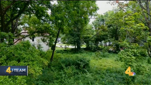 Channel 4 I-Team investigates overgrown Lipscomb property