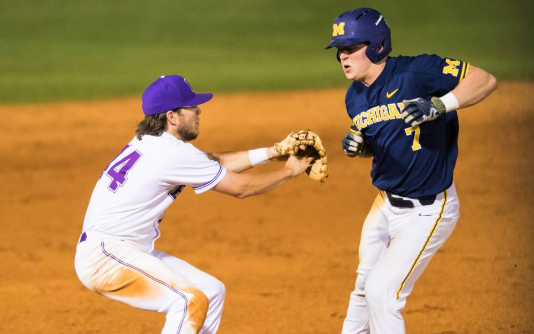 Bisons baseball wins two-of-three in weekend series against Michigan