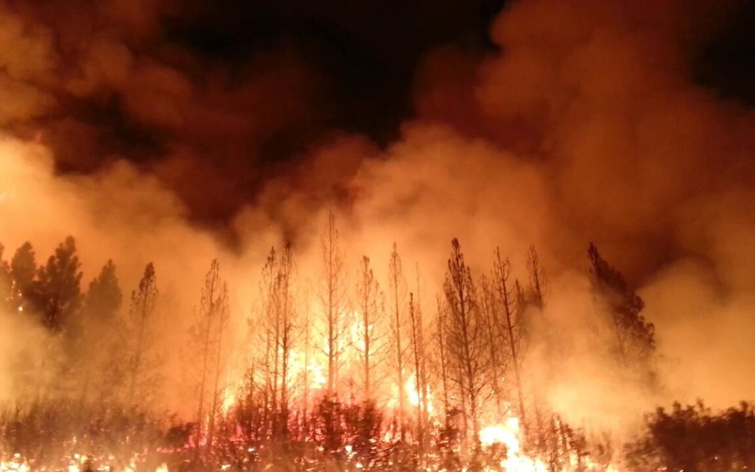 Devastating Australian wildfires have an impact on Lipscomb's campus