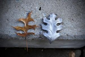 Fall 5957