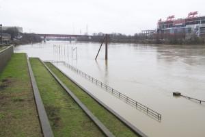 flood3Q4A6302