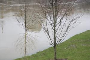 flood3Q4A6337